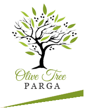 Olive Tree - Parga