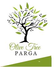 Olive Tree - Parga